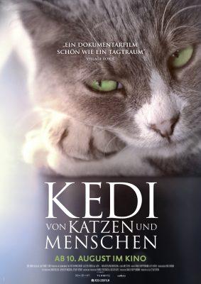 KEDI Plakat